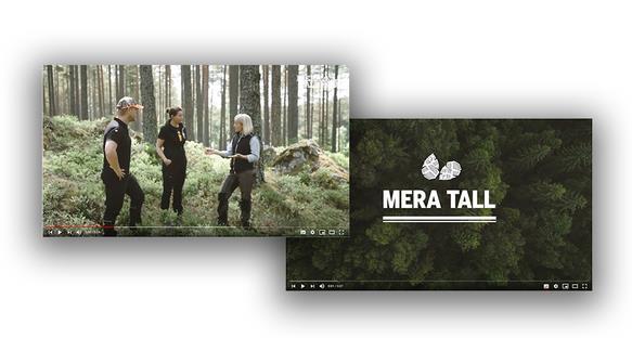 Bildklipp från film om Mera tall