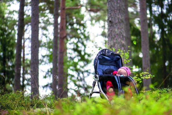 Barn i skog. Fotograf: Kersti Vikström